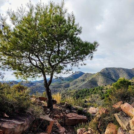 Provincia de Valencia, España: Landscape
