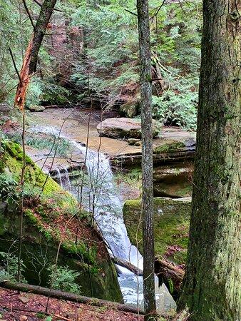 Cedar Falls Hiking