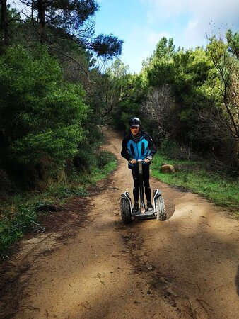 running free in Serra de Sintra