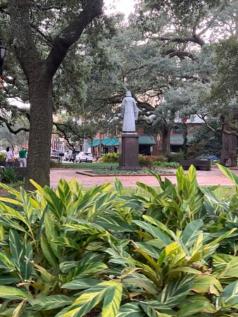 Savannah Photo