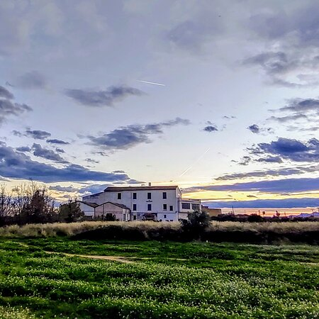 Provincia de Valencia, España: Sunset in the rice fields