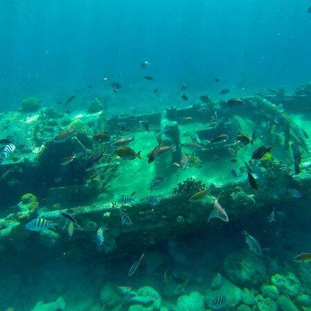 At Sea Curacao