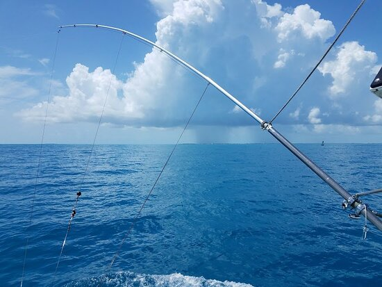 Deep Sea Florida Fishing Charters