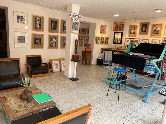 Andrew Xenios Photography Studio and Gallery