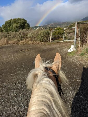 On our way out under the rainbow