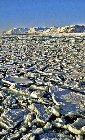 אנטארקטיקה: Antartide 2