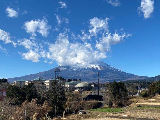 Mikadoya Fuji