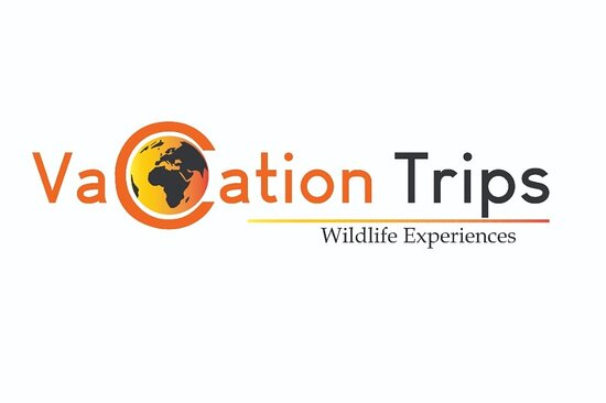 Vacation Trips