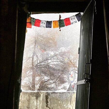A snowy trip to manali.