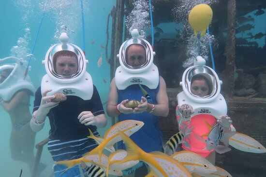 Aruba: SeaTrek