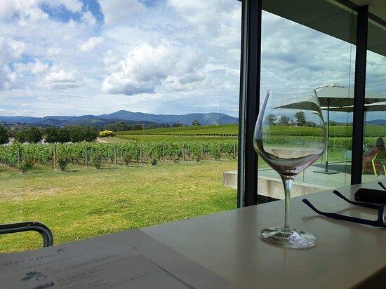 Wine tasting views