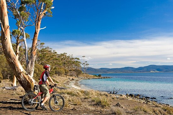 Australian Cycle Tours