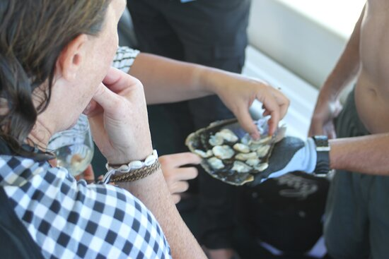 PRIVATE CHARTER : Ocean to Plate - A Taste of the Seafood Frontier: raw razor fish