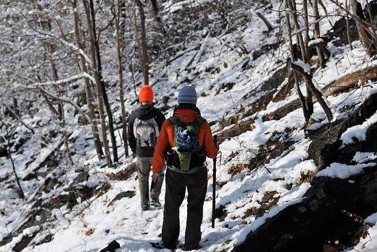 Full-Day Private Alpine Ridge Hiking Tour in Beacon