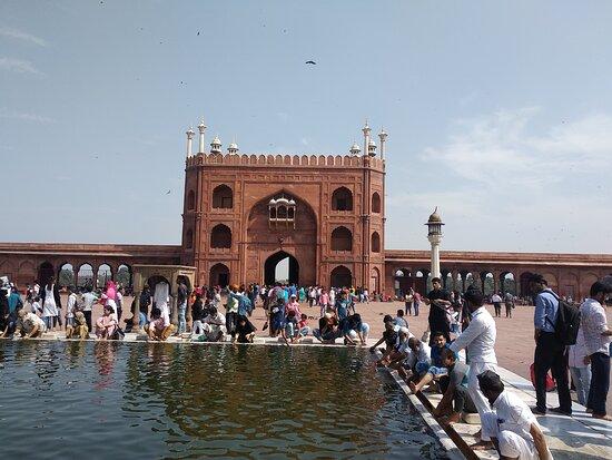 Delhi City Tour: Мечеть Джамия