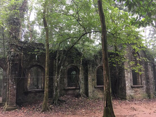 Full-Day Private Guided Hiking Tour of Ba Vi National Park: French Ruined Church