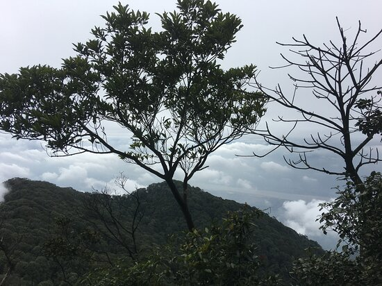 Full-Day Private Guided Hiking Tour of Ba Vi National Park: Ba Vi mountain view down the valley