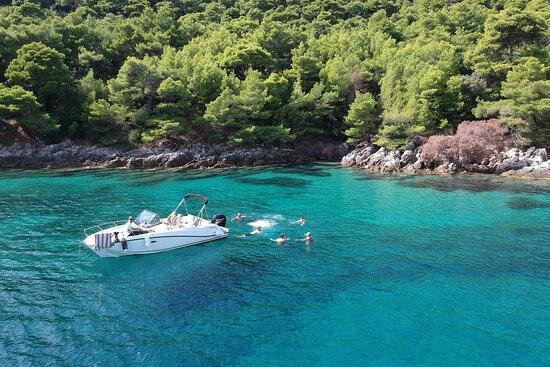 Hidden Marine - Private Boat Tours