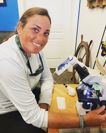 This is our Naturalist guide Colleen, who is uploading water samples into the Gulf of Mexico Coastal Ocean Observation System (GCOOS) HABscope. This program is helping to create a respiratory forecasting system associated with Red Tide. The Florida Adventures team is working on collecting water samples from offshore Marco to Cape Romano to assist in data collection for the forecasting in Southern Collier County.
