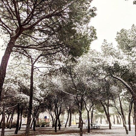 Madrid, Spain: PARQUE FELIX RODRÍGUEZ DE LA FUENTE