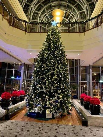 Christmassy Main lobby ..