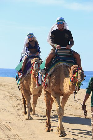 Camel Ride Adventure in Cabo: Tito took photos of us the entire time.