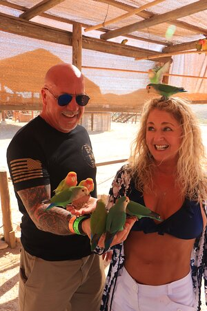 Camel Ride Adventure in Cabo: Seeing the Lovebirds after riding camels.