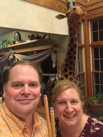 Billiards with Ginger the giraffe!