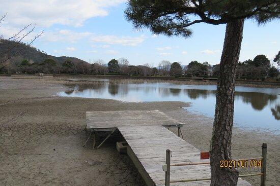 水抜きされた大沢池 景観一例