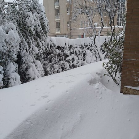 Madrid, Tây Ban Nha: La nevada del siglo XXI.