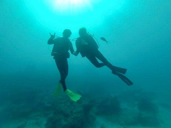 Key Largo FL ACHI Divers