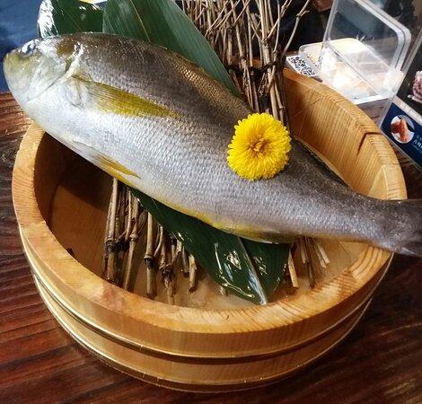 高級日本海鮮