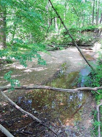trail along streem