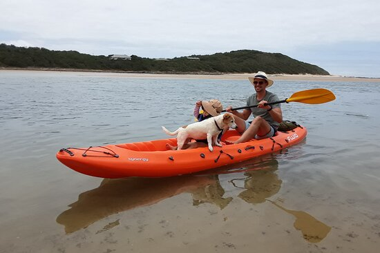 Sunshine Coast Kayak Tours