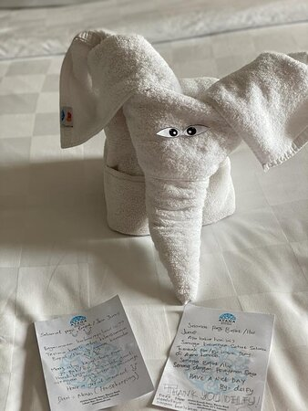 Cute Elephant Towel + sweet letter for the 3rd day