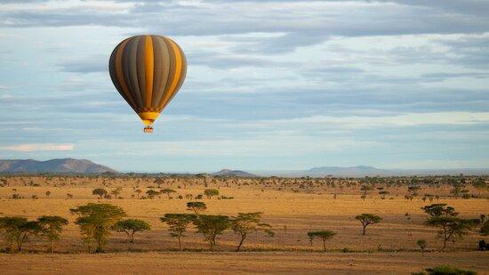 Balloon Safari - Serengeti