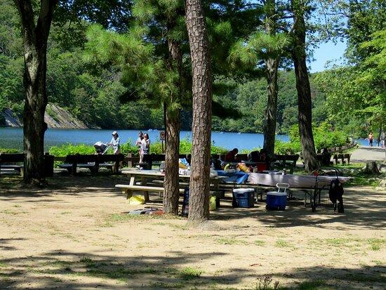 Bear Mountain, นิวยอร์ก: picnic