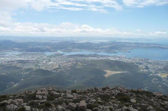 kunanyi / Mt Wellington Explorer Bus - 2 Hour Return Tour: spectacular views