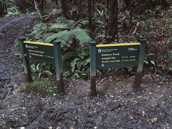 Ryan's Creek Track