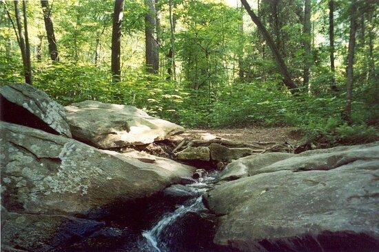 Stone Mountain – Nature Garden Trail