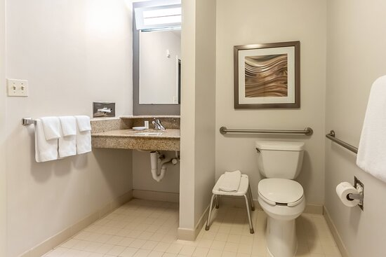 Accessible Bathroom -Roll-in Shower