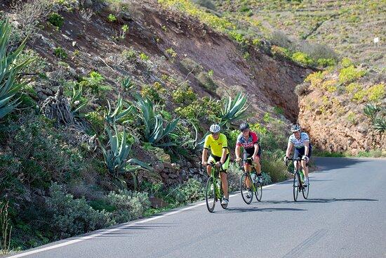Lanzarote Bike