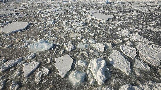 Antarctica: Antartide 7