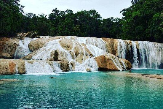 Dia Completo en Cascadas de Agua Azul...