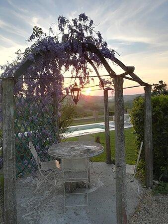 Foto de Country House Montessino, Ottiglio: Früstücksterrasse - Tripadvisor