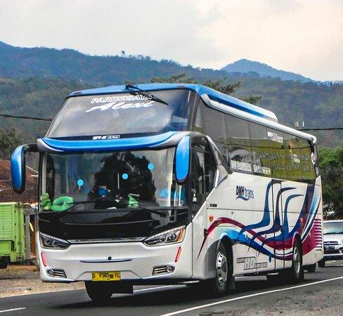 Dmh Transport