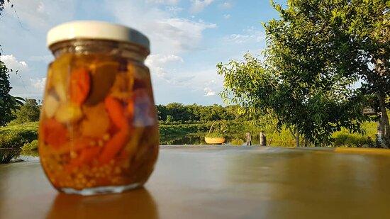 Rochedo, MS: Molho de pimenta para sua refeição