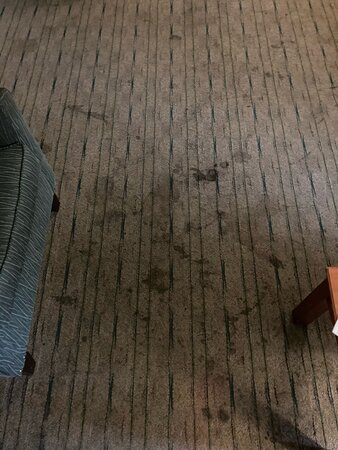 Stained carpet in living room