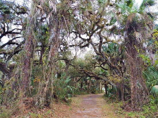 LaBelle Nature Park