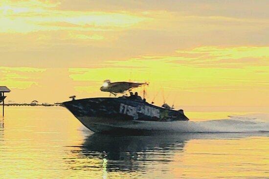St. George Island صورة فوتوغرافية